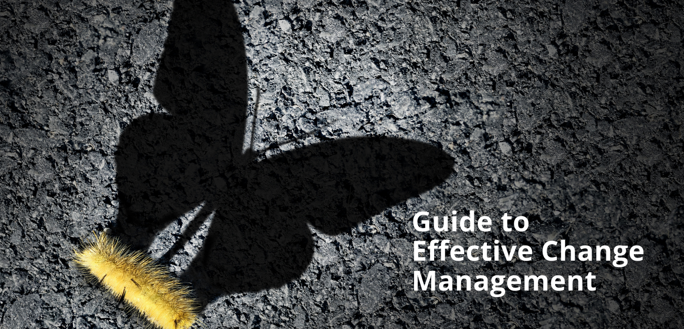 Guide to Effective Change Management Image